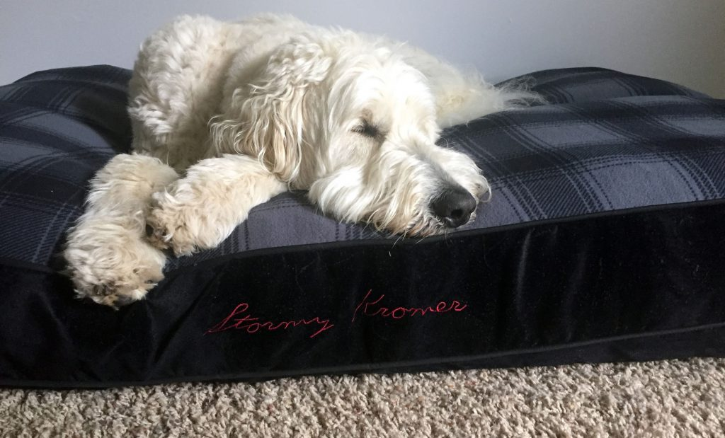 Ernest_Dog_Bed